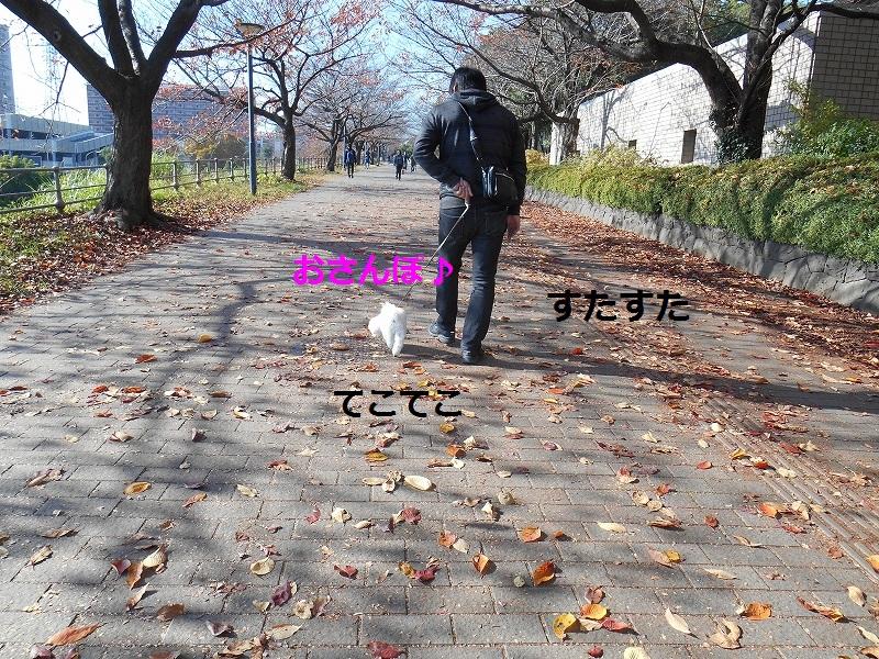 DSCN0543.jpg