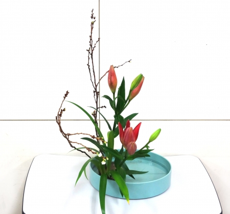 DSC01436-盛り花141117