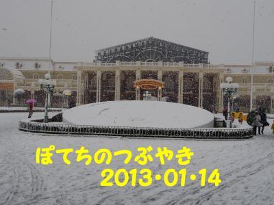 20130114 花壇
