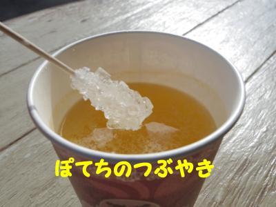 20130124 柚子ジンジャー1