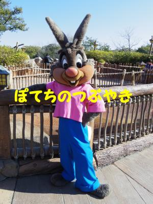 20130203 うさぎどん