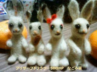 ウサギに見えますか?!
