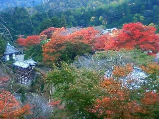 薬師堂から幸福地蔵を見下ろした紅葉