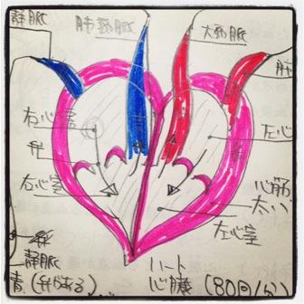 心臓FC2
