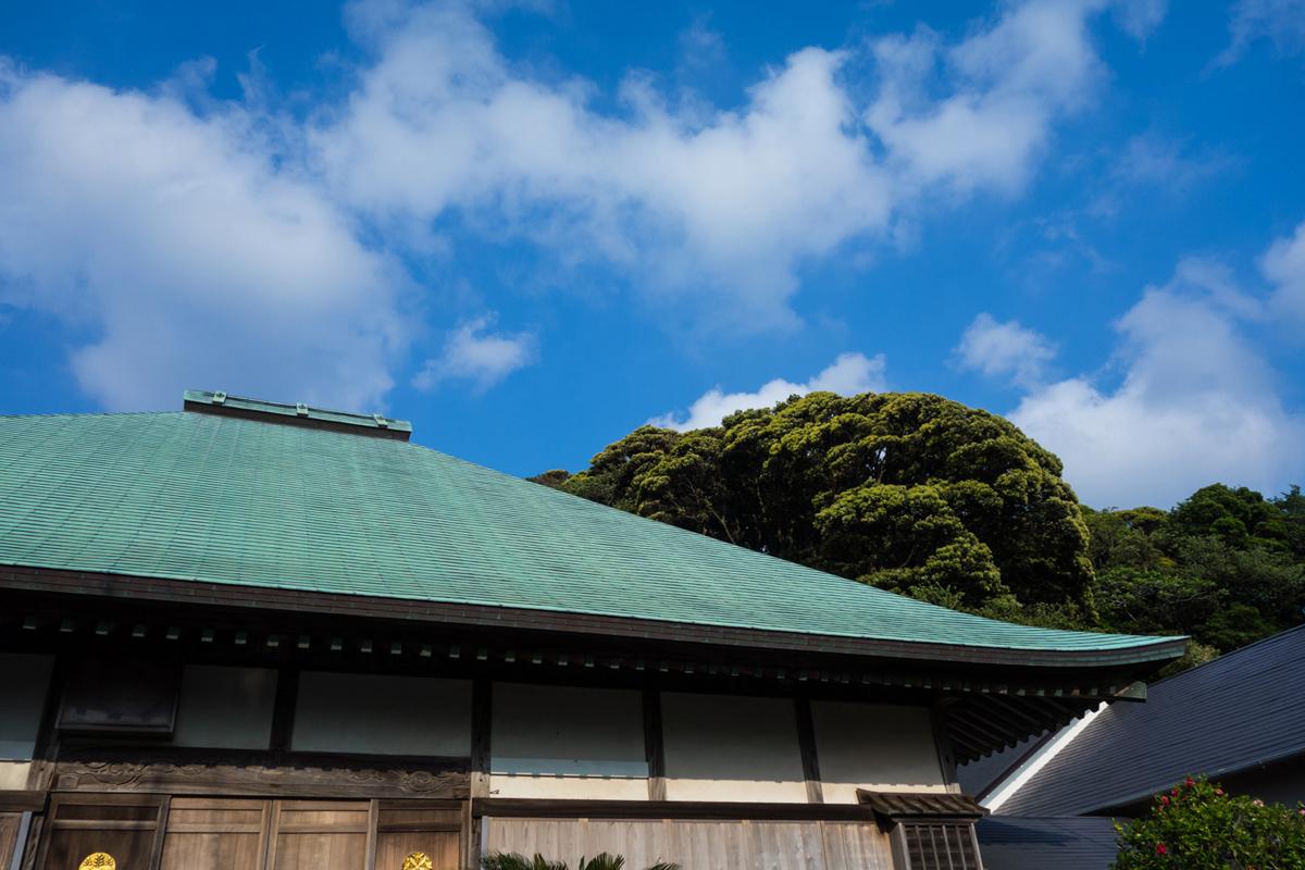 0504_shirahama-13.jpg