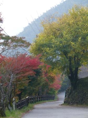 2012.11.9紅葉 039