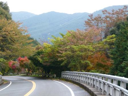 2012.11.13もみじ 084