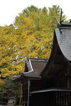 2012.11.15黒門他 001