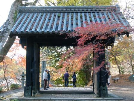 2012.11.27散歩 011