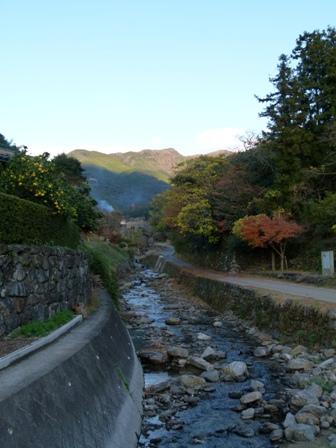 2012.11.27散歩 030