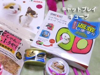 cat12-06-11.jpg