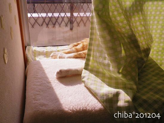 chiba12-04-92.jpg