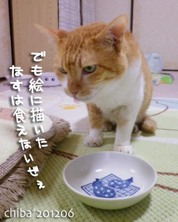 chiba12-06-53x.jpg