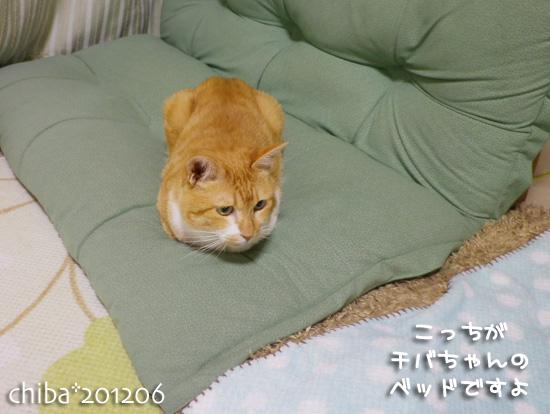 chiba12-06-82.jpg