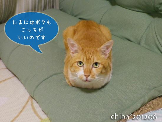 chiba12-06-83.jpg
