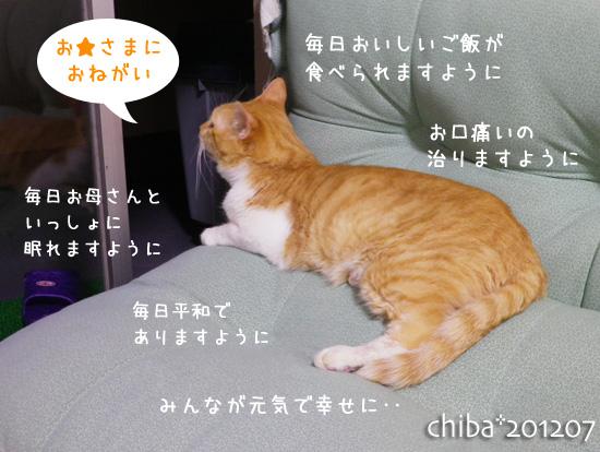 chiba12-07-26.jpg