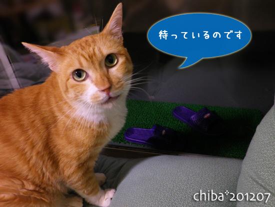 chiba12-07-32.jpg