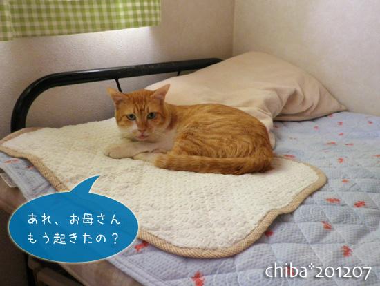 chiba12-07-41.jpg