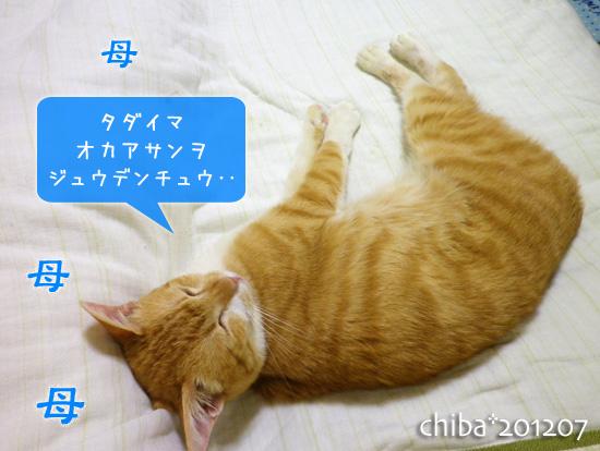 chiba12-07-59.jpg