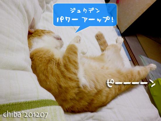 chiba12-07-61.jpg