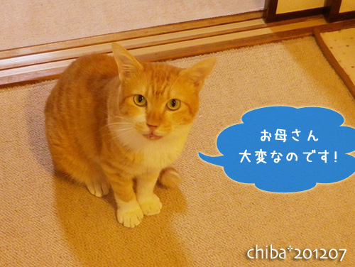 chiba12-07-62.jpg