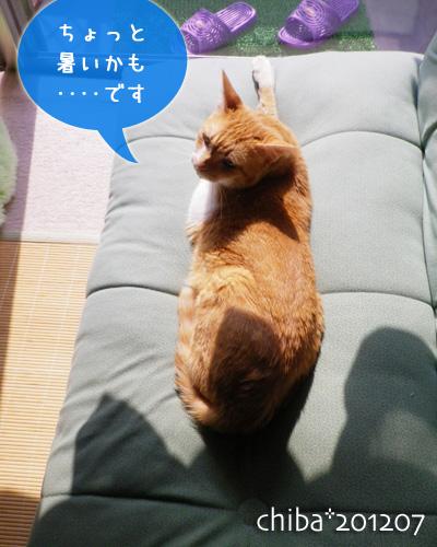 chiba12-07-65.jpg