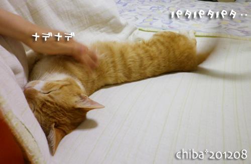 chiba12-08-32.jpg