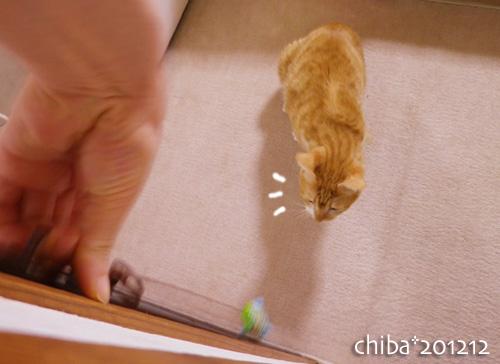 chiba12-12-115.jpg