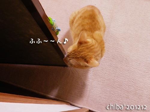 chiba12-12-121.jpg