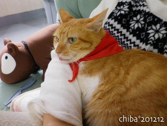 chiba12-12-143.jpg