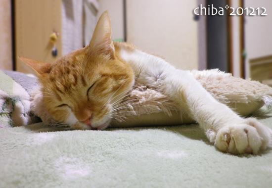 chiba12-12-162.jpg