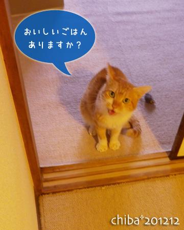 chiba12-12-173x.jpg