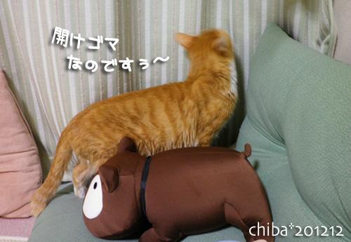 chiba12-12-93.jpg
