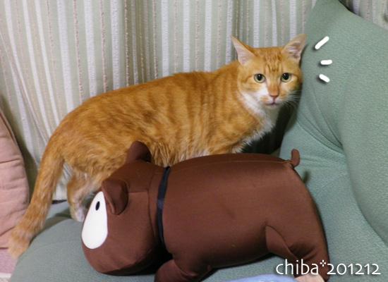 chiba12-12-94.jpg