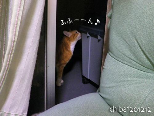 chiba12-12-98.jpg