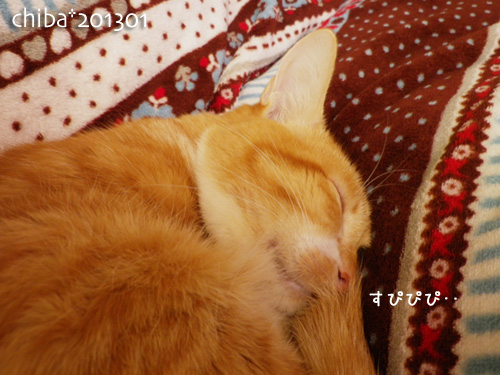 chiba13-01-43.jpg