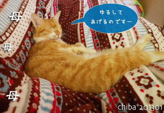 chiba13-01-45.jpg
