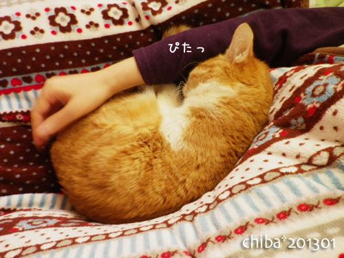 chiba13-01-46.jpg