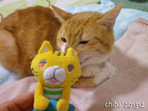 chiba13-12-77.jpg