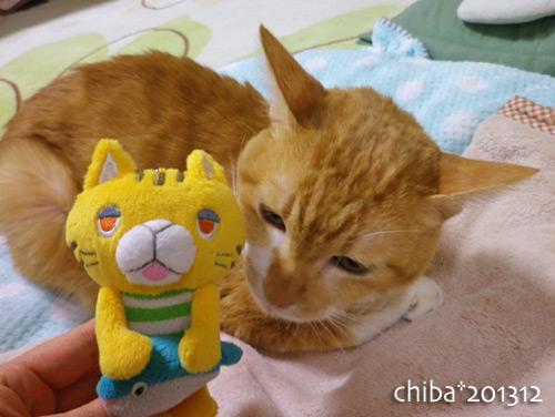 chiba13-12-81.jpg