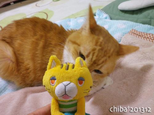 chiba13-12-85.jpg