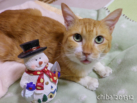 chiba13-12-91.jpg