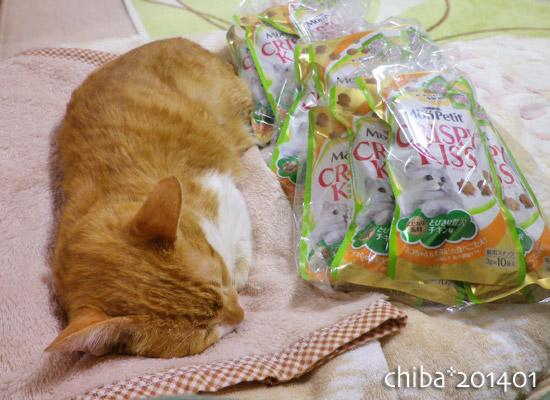 chiba14-01-11.jpg