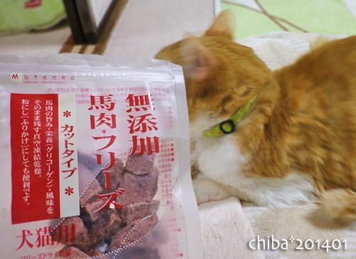 chiba14-01-48.jpg