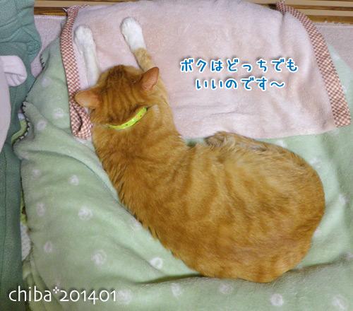 chiba14-01-61.jpg