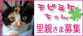 chibimike-170.jpg