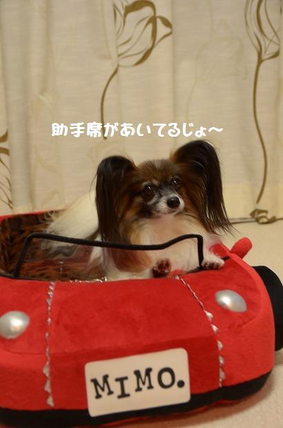 DSC_0043_20121002212855.jpg