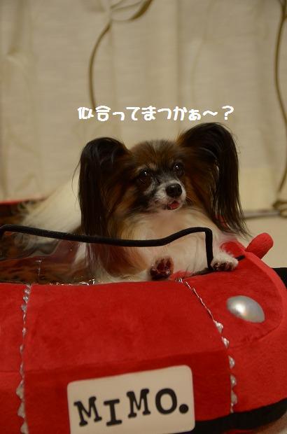 DSC_0044_20121002212816.jpg