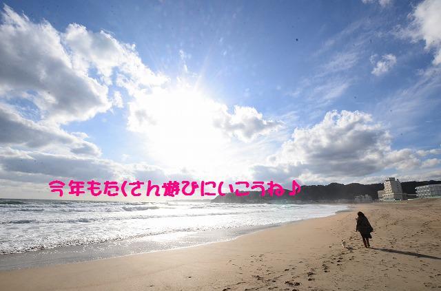 DSC_0302_20130102100043.jpg