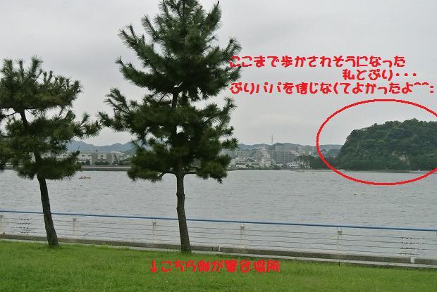 DSC_2902.jpg